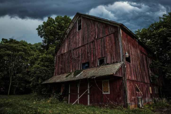brown wooden barn near trees